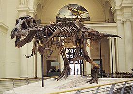 Самый большой оперенный динозавр